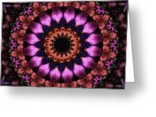 Klassy Kaleidoscope Greeting Card by Lyle Hatch
