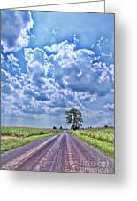Knowing The Right Way Greeting Card by Cathy  Beharriell