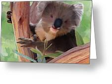 Koala  Painting Greeting Card by Michael Greenaway
