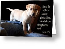 Labadore Puppy Is. 12v5 Greeting Card by Linda Phelps