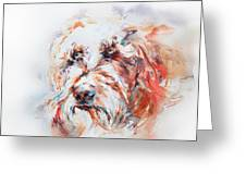 Labradoodle Greeting Card by Stephie Butler