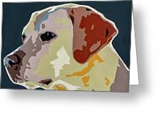 Labrador Greeting Card by Slade Roberts