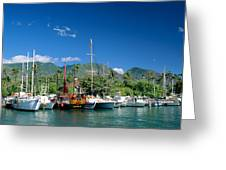 Lahaina Harbor - Maui Greeting Card by William Waterfall - Printscapes