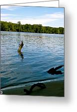 Lakeview   Greeting Card by Debra     Vatalaro
