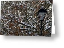 Lamp Greeting Card by Paul  Mealey
