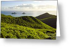 Lanikai Hills Greeting Card by Dana Edmunds - Printscapes