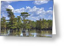 Largemouth Country Greeting Card by Barry Jones
