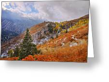 Last Fall Greeting Card by Chad Dutson