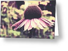 Last Summer Greeting Card by Angela Doelling AD DESIGN Photo and PhotoArt