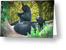 Laughing Bears Greeting Card by John Haldane