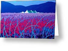 Lavender Scape Greeting Card by John  Nolan