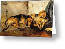 Lazy Moments Greeting Card by John Sargent Noble