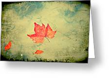 Leaf Upon The Water Greeting Card by Bill Cannon