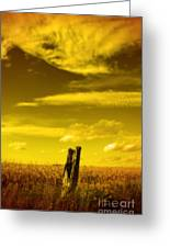 Left Alone Greeting Card by Cathy  Beharriell