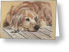 Lexie Greeting Card by Terry Kirkland Cook