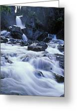 Liberty Falls And River In Liberty Greeting Card by Rich Reid