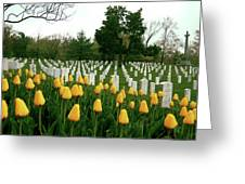 Life and Death at Arlington Greeting Card by Jame Hayes