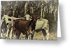 Life On The Farm V3 Greeting Card by Douglas Barnard