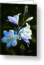 Lilies Greeting Card by Suni Roveto