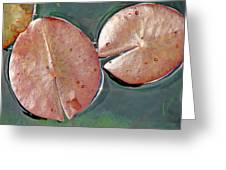 Lily Pads 1 Greeting Card by Diana Douglass