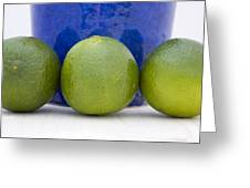 Lime Greeting Card by Frank Tschakert