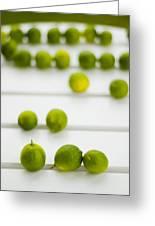 Lime Green Greeting Card by Skip Hunt