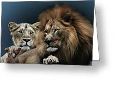 Lion Family Greeting Card by Julie L Hoddinott