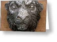 Lion Greeting Card by Vladimir Kozma