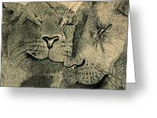 Lions in Love Greeting Card by Ramneek Narang