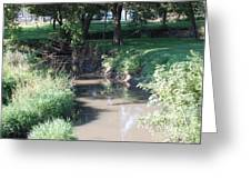 Little Creek Greeting Card by Heather Chaput