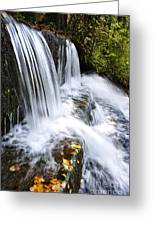 Little Elbow Waterfall Greeting Card by Thomas R Fletcher