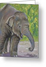 Little Luk Chai Greeting Card by Louise Green