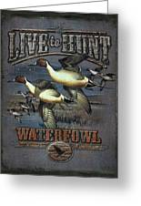 Live To Hunt Pintails Greeting Card by JQ Licensing
