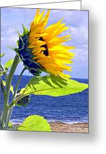 Living Is A Blessing..... Greeting Card by Tanya Tanski