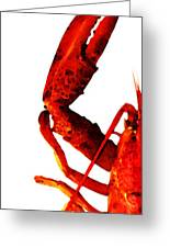 Lobster - The Left Side Greeting Card by Sharon Cummings