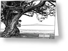 Lone Tree Bench And Volcano Greeting Card by Yurix Sardinelly
