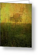 Lone Tree In Meadow -textured Greeting Card by Dave Gordon