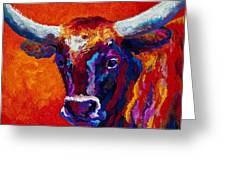 Longhorn Steer Greeting Card by Marion Rose
