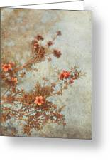 Love Is In Bloom Greeting Card by Laurie Search