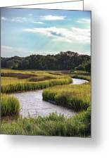 Lowcountry Creek Greeting Card by Drew Castelhano