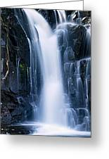 Lower Johnson Falls 3 Greeting Card by Larry Ricker