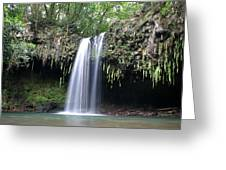 Lush tropical waterfall Twin Falls on Maui Hawaii Greeting Card by Pierre Leclerc Photography