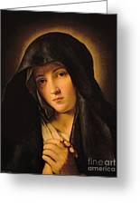 Madonna Greeting Card by Il Sassoferrato