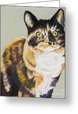 Maggie Mae Greeting Card by Pat Saunders-White