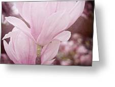 Magnolia Greeting Card by Angela Doelling AD DESIGN Photo and PhotoArt