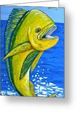 Mahi Mahi Greeting Card by JoAnn Wheeler