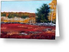 Maine Wild Blueberries Greeting Card by Laura Tasheiko
