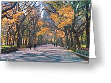 Mall Central Park New York City Greeting Card by George Zucconi