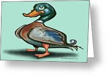 Mallard Duck Greeting Card by Kevin Middleton