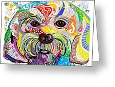 Maltese Puppy Greeting Card by Eloise Schneider